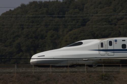 DSC00165(500).JPG